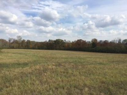 0 County Road 431  Bryant, AL MLS# 1321640