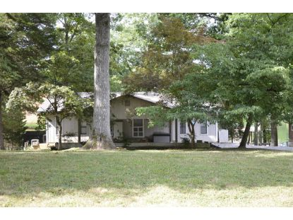 1115 Groover Rd Spring City, TN MLS# 1321684