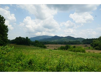 00 Cookson Creek Rd Ocoee, TN MLS# 1323808