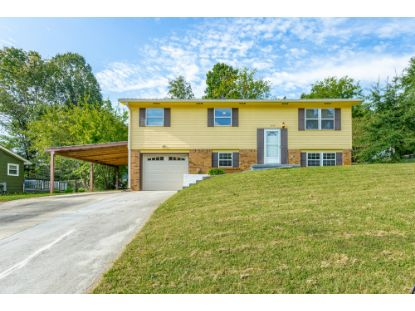 1376 Meadowood Dr Hixson, TN MLS# 1324620
