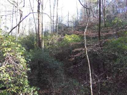0 Redwood Ln Ellijay, GA MLS# 1329389
