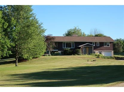 6771 West Munger Road, Onsted, MI