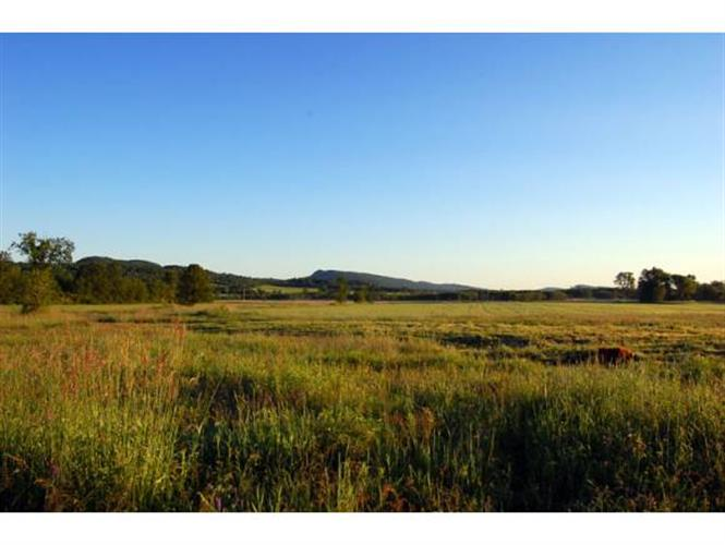 Lot #15 Burr Oak Lane, Cornwall, VT 05753