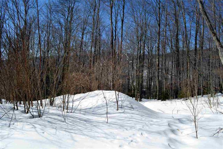 161 Wild Turkey Lane, Fayston, VT 05673