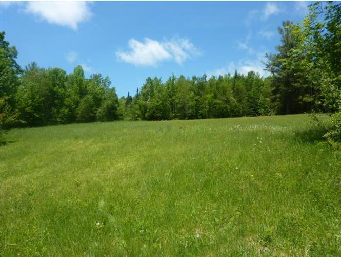 2078 Warren Mountain Road, Roxbury, VT 05669