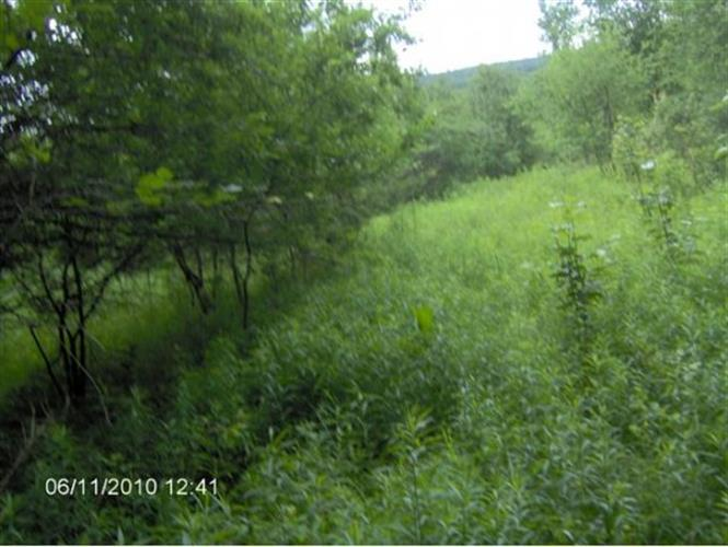 Lot 5 Hebard Hill Rd., Randolph, VT 05060