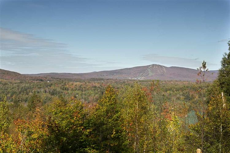 Lot 5/6 Garden Loop Rd, Winhall, VT 05340