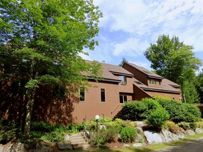 251 Luce Hill Road Stowe, VT MLS# 4374613