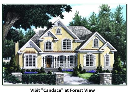 Lot 50 LORDEN Rd FOREST VIEW, New Boston, NH