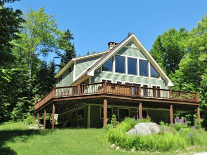 419 ALPINE Drive Mount Holly, VT MLS# 4498275