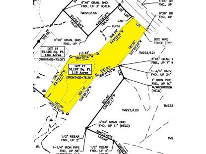 Lot 17 Chestnut Forest (Tolend Rd), Barrington, NH