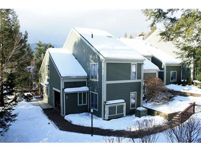 384 D Topnotch Road Stowe, VT MLS# 4612232