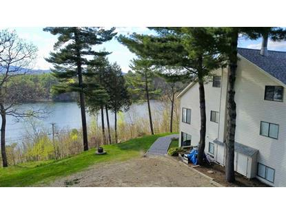 25 Red Fox Road Bristol, NH MLS# 4670940