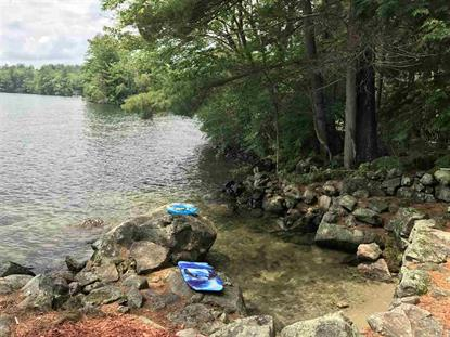 193 Pikes Point Road Bristol, NH MLS# 4678647