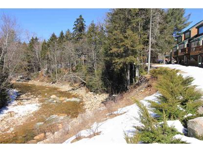 26 Tyler Spring Way, Waterville Valley, NH
