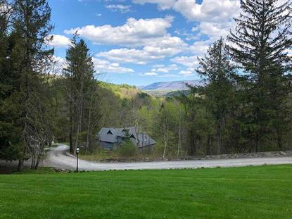 87 West Mountain Road, Arlington, VT