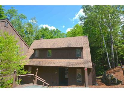 53 College Overlook Grantham, NH MLS# 4698182