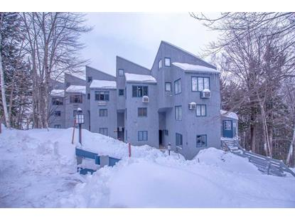 10 Blueberry Village at Attitash Mountain Road Bartlett, NH MLS# 4732542