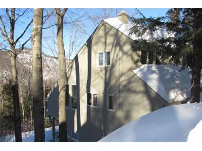 7 Cathedral Trail Bartlett, NH MLS# 4732736