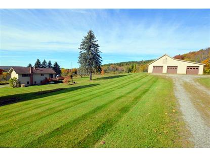 453 Tabor Road Shrewsbury, VT MLS# 4780620