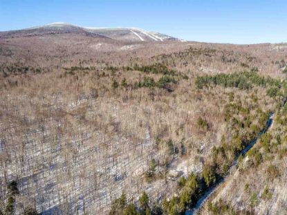 42 Forrester Road Stratton, VT MLS# 4789029