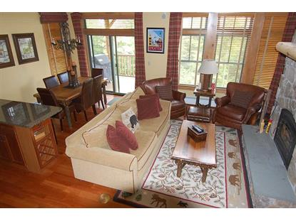 28-B Winterberry Heights Stratton, VT MLS# 4789122