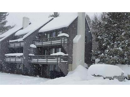 175 Moon Ridge Road Killington, VT MLS# 4790240