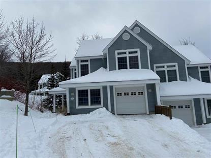6 A Upper Glades Road Stratton, VT MLS# 4790886