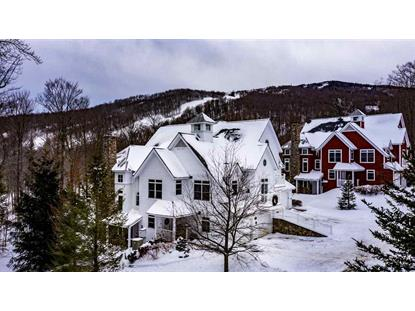 35A Sun Bowl Ridge Road Stratton, VT MLS# 4791587
