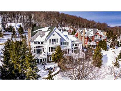 90B Sun Bowl Ridge Road Stratton, VT MLS# 4791603