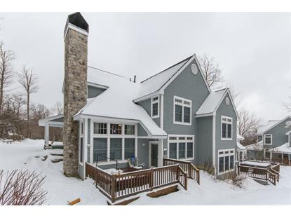 52B Snow Bridge Road Stratton, VT MLS# 4794137