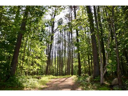 Lot 45/46 Butternut Lane Holderness, NH MLS# 4814590