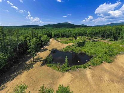 75 Perch Pond Road Holderness, NH MLS# 4814717