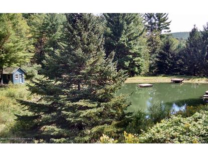 1713 Beaver Pond Rd Clarks Summit, PA MLS# 17-2347