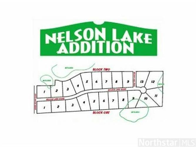 lot 7 blk 1 Nelson Lake Road, Pillager, MN 56473
