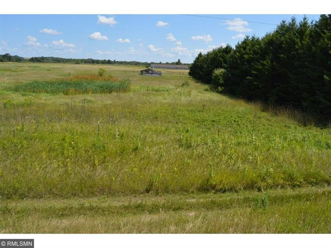 TBD County 1, Pillager, MN 56473
