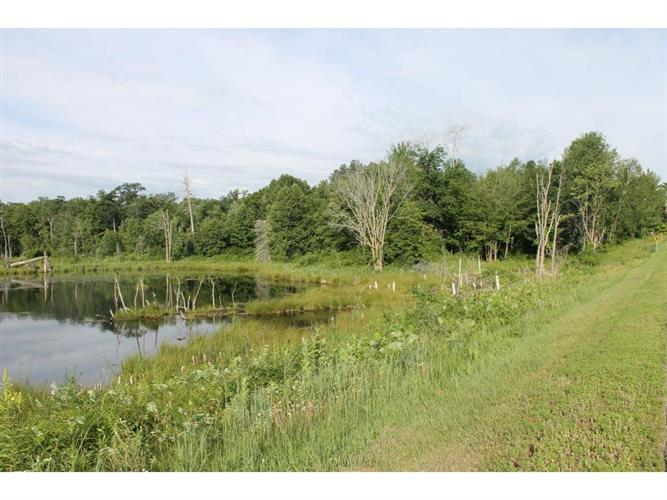 County Rd 77, Brainerd, MN 56401 - Image 1