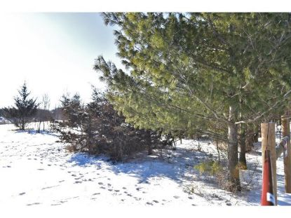 XXX Highway 52 Road Cannon Falls, MN MLS# 4673210