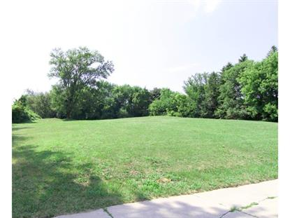 Cahill Avenue Inver Grove Heights, MN MLS# 4856226