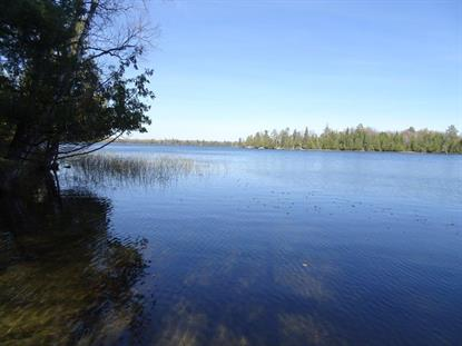 xxxx Echo Pine Trail  Remer, MN MLS# 4934675