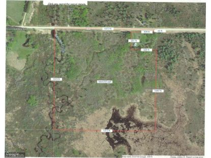 XXXXX 8 Mile Road Blackduck, MN MLS# 4992585