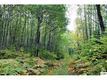 tbd COUNTY RD 25  Grand Rapids, MN MLS# 5132679