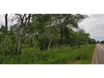 169th Ave  Ham Lake, MN MLS# 5147329