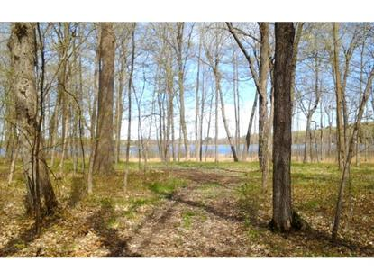 290th Street Aitkin, MN MLS# 5238845