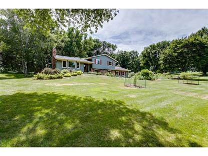 14665 55th Street S Afton, MN MLS# 5247811