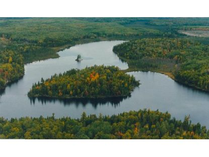 TBD Elbow Lake  Orr, MN MLS# 5249401
