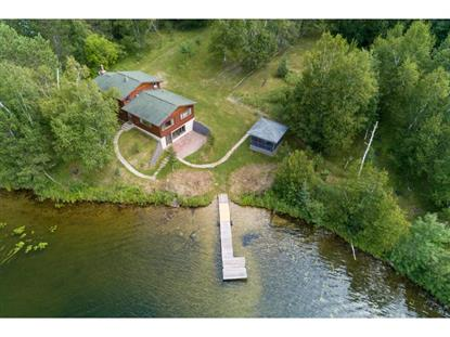 29486 Ivy Road Balsam, MN MLS# 5250628