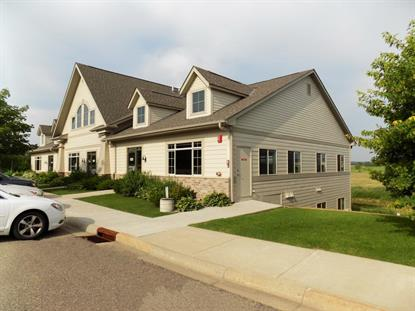 8 Meander Court Medina, MN MLS# 5262476