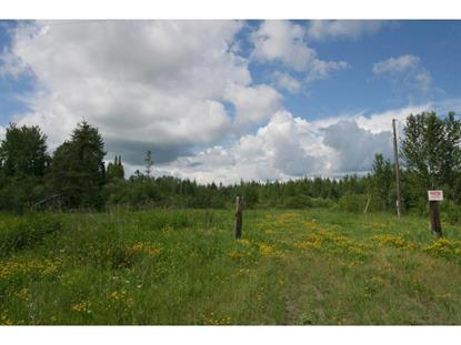 W Olson Rd  Cook, MN MLS# 5265080