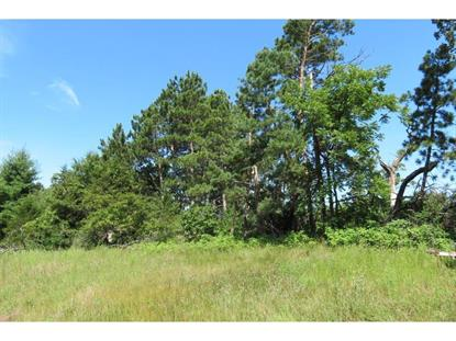 167th Street Big Lake, MN MLS# 5271408